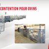 Parc de contention pour ovins