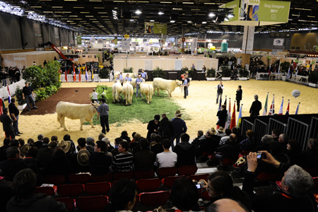 Concours SIMA 2011